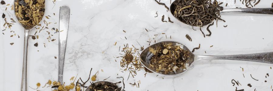 Atelier de Peter : Découverte des thés